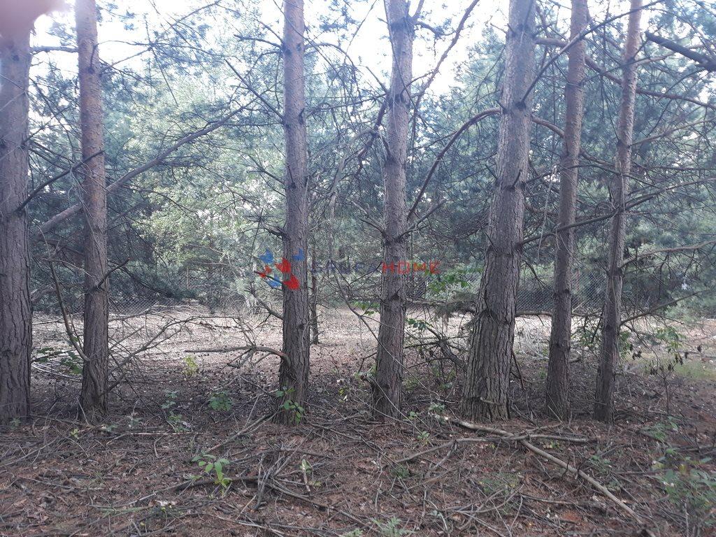 Działka leśna z prawem budowy na sprzedaż Jeziórko  1070m2 Foto 2