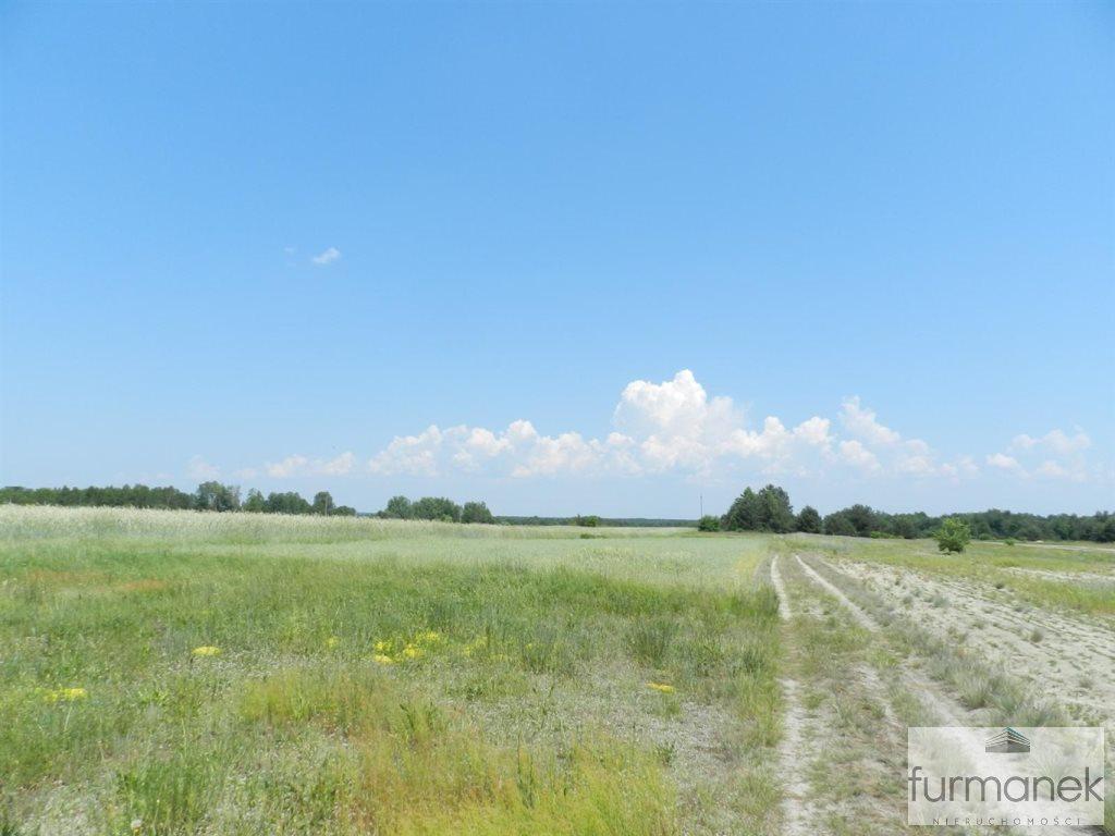 Działka rolna na sprzedaż Gózd Lipiński  11400m2 Foto 2