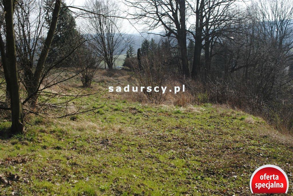 Działka rolna na sprzedaż Kraków, Zwierzyniec, Przegorzały, Kamedulska  2400m2 Foto 11