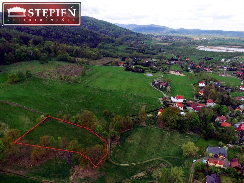 Działka budowlana na sprzedaż Podgórzyn  4300m2 Foto 1