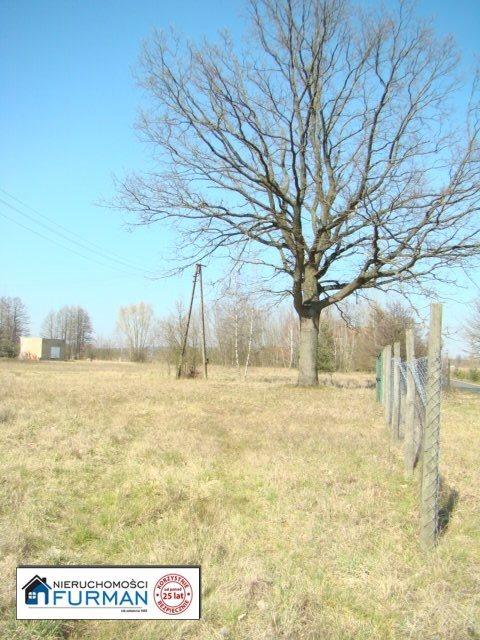 Działka inna na sprzedaż Stróżewice  25100m2 Foto 3