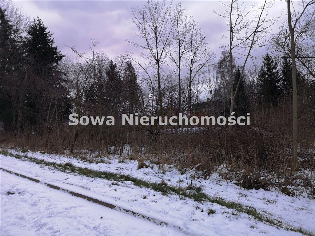 Działka inna na sprzedaż Wałbrzych, Biały Kamień  6000m2 Foto 5
