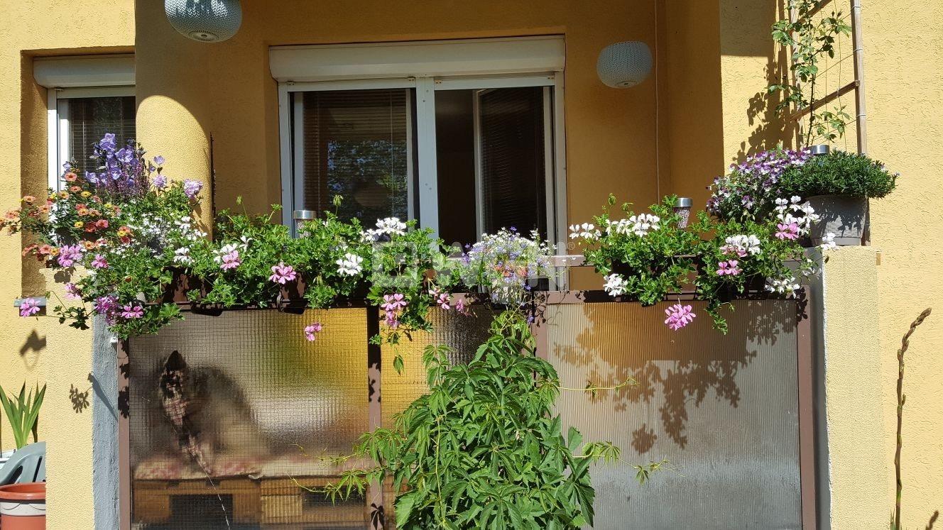 Mieszkanie dwupokojowe na wynajem Szczecin, Gumieńce, Gumieńce  52m2 Foto 2