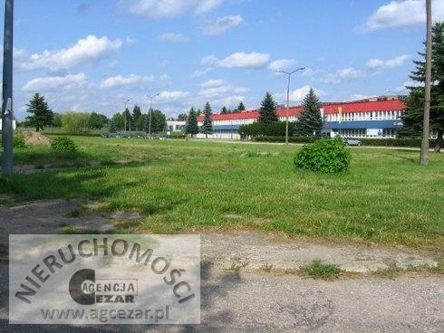 Działka przemysłowo-handlowa na sprzedaż Siedlce, Kleberga  4709m2 Foto 4