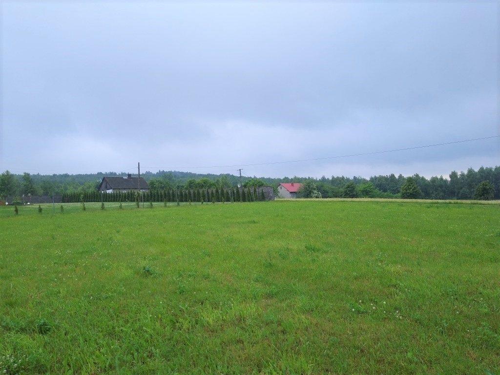 Działka budowlana na sprzedaż Pępice  1238m2 Foto 5