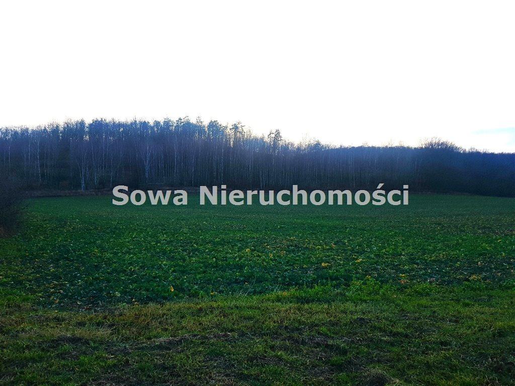 Działka inna na sprzedaż Świebodzice, Pełcznica  54058m2 Foto 1