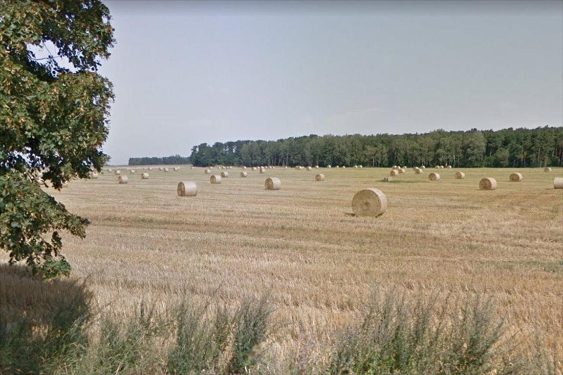 Działka rolna na sprzedaż Dopiewo, Dopiewo  89500m2 Foto 1
