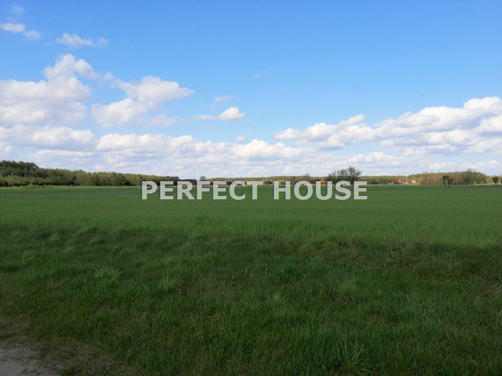Dom na sprzedaż Drawsko  268m2 Foto 5