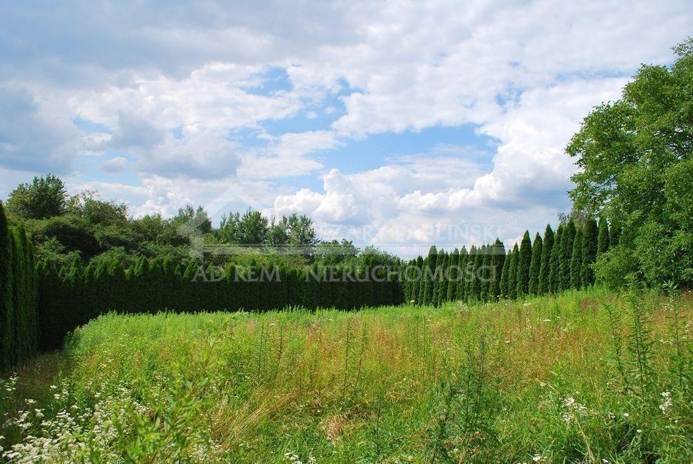 Działka budowlana na sprzedaż Lublin, Wiktoryn, Wiktoryn, Rudnik  1203m2 Foto 12