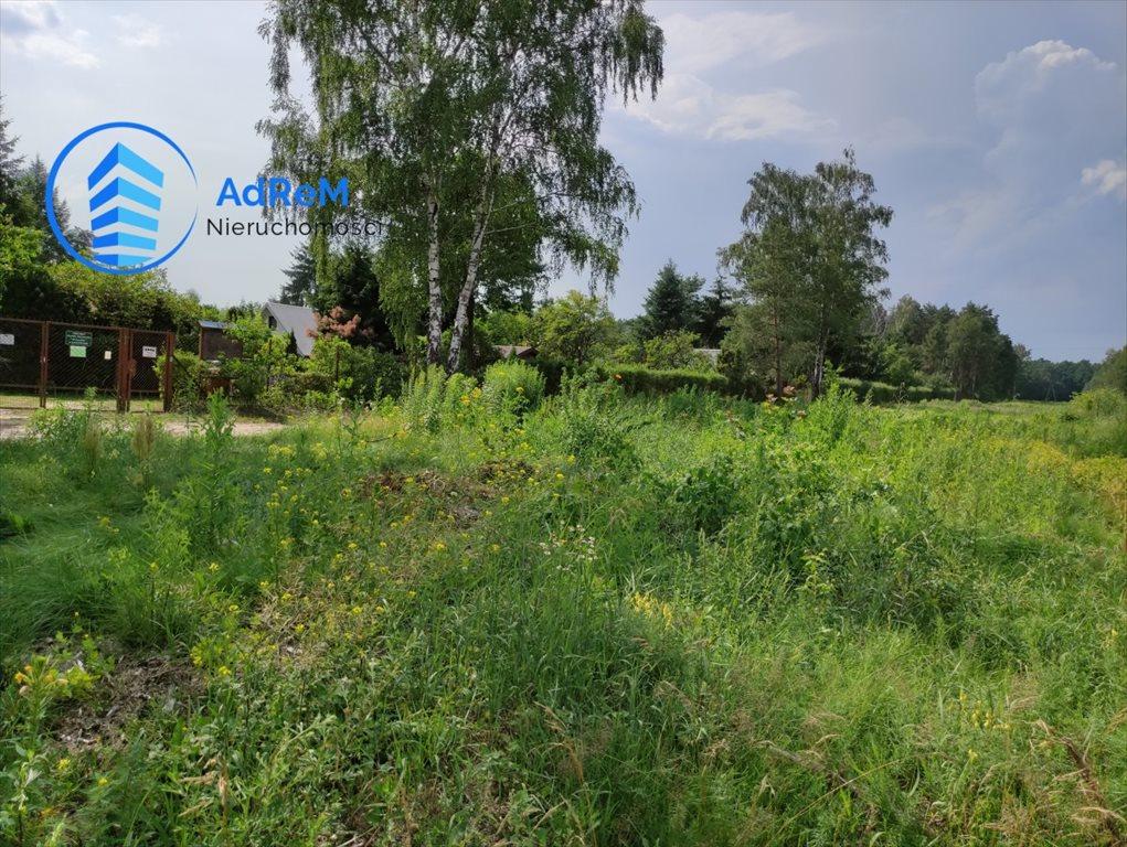 Działka rolna na sprzedaż Kędzierówka  30300m2 Foto 2