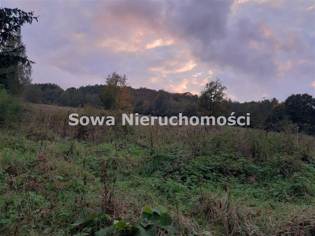 Działka inna na sprzedaż Michałkowa  2259m2 Foto 5