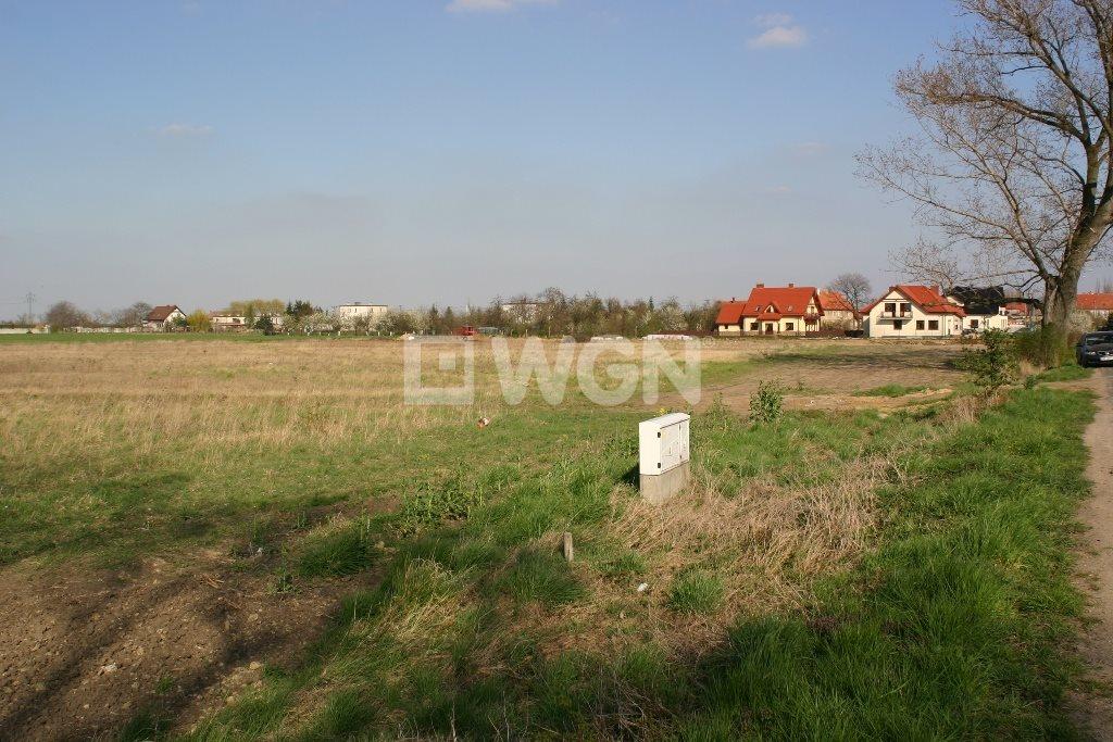 Działka inwestycyjna na sprzedaż Pietrzykowice, Pietrzykowice, ok. Smoleckiej  4300m2 Foto 1
