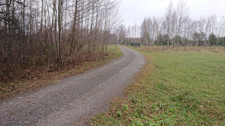 Działka rolna na sprzedaż Budy Michałowskie  12012m2 Foto 2