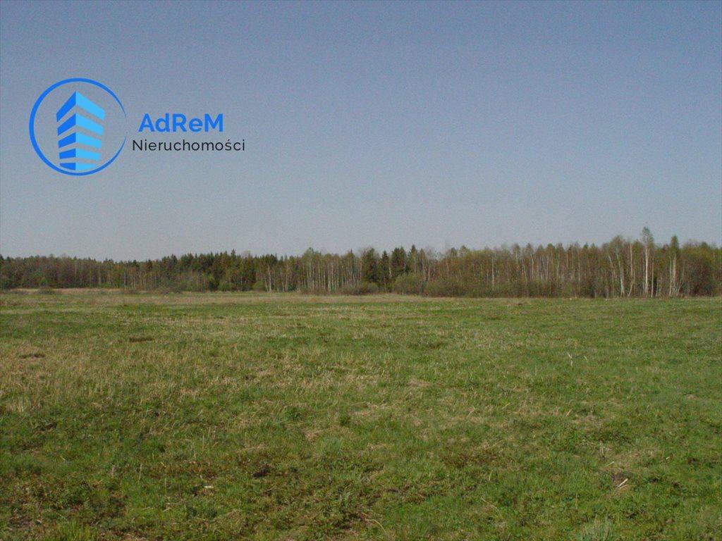 Działka rolna na sprzedaż Dworzysk  20000m2 Foto 1