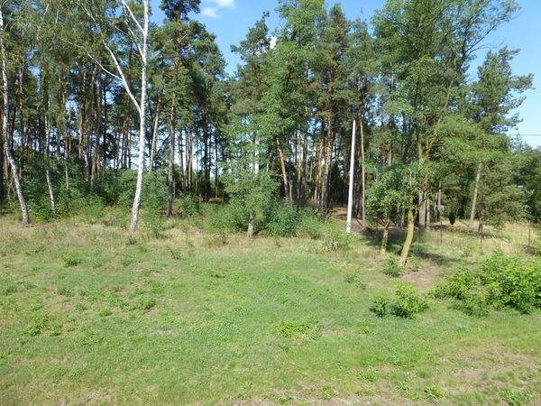 Dom na sprzedaż Zakrzew, Kozia Wola, Gulin  289m2 Foto 10