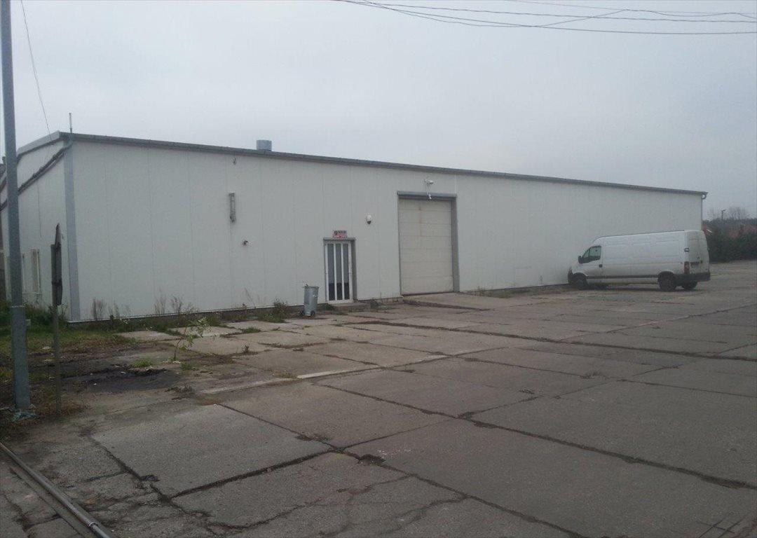 Lokal użytkowy na wynajem Rurzyca, Goleniowska 114  440m2 Foto 2
