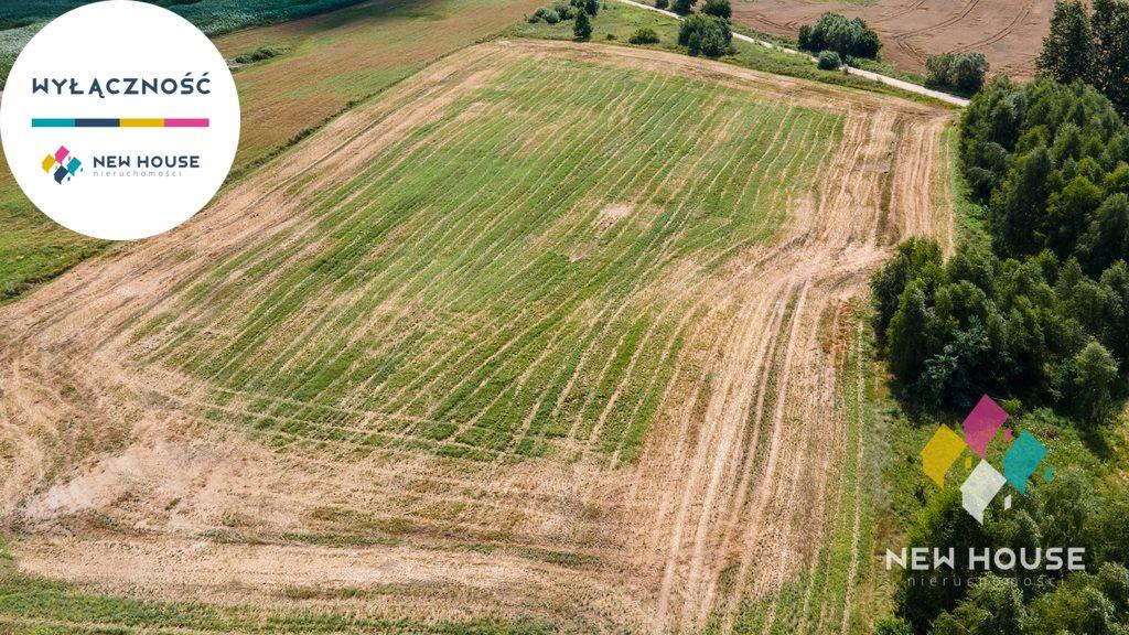 Działka rolna na sprzedaż Boguchwały  19200m2 Foto 4