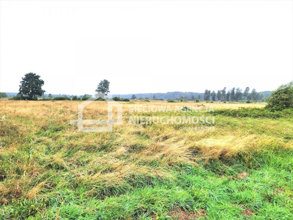 Działka rolna na sprzedaż Sasino  28300m2 Foto 3