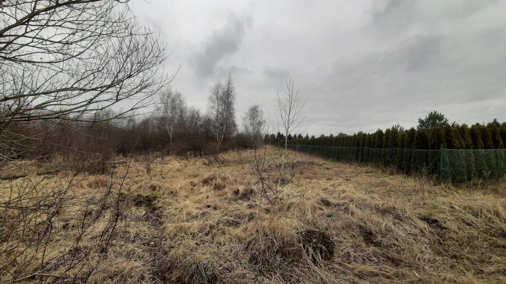 Działka rolna na sprzedaż Karwowo  33000m2 Foto 3