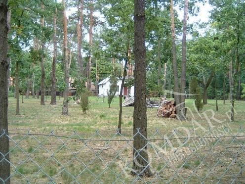 Działka budowlana na sprzedaż Warszawa, Wawer, Wawer / Międzylesie  5200m2 Foto 3