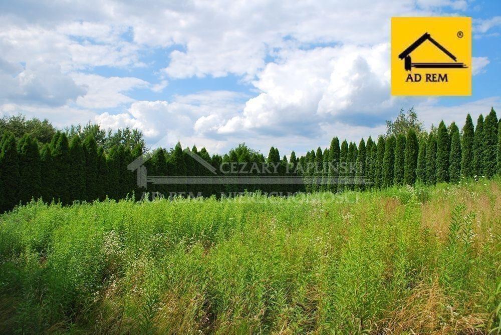 Działka budowlana na sprzedaż Lublin, Wiktoryn, Wiktoryn, Rudnik  1203m2 Foto 4