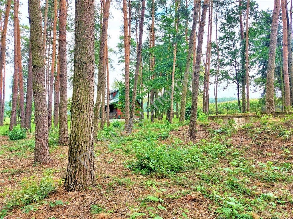 Działka rekreacyjna na sprzedaż Drożdżówka  1427m2 Foto 4