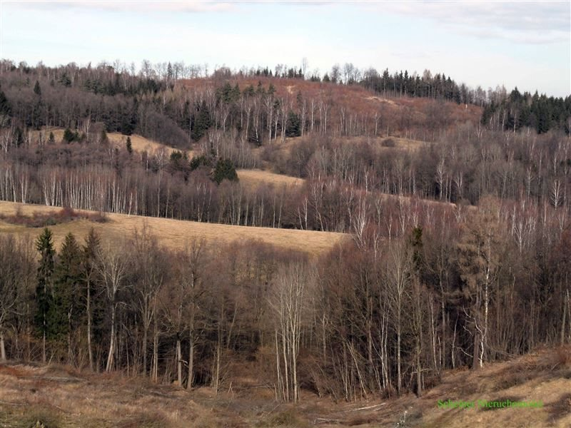 Działka rolna na sprzedaż Lubomierz, Pogórze Izerskie  370000m2 Foto 5