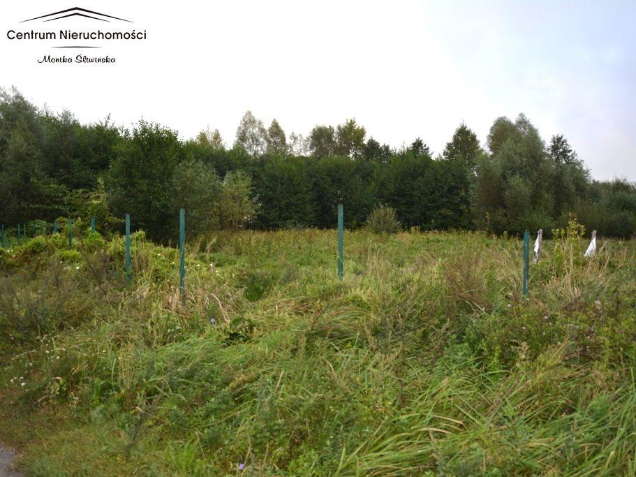 Działka rolna na sprzedaż Małe Łunawy  5000m2 Foto 3