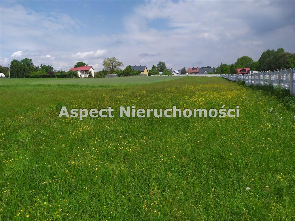 Działka budowlana na sprzedaż Nowa Osuchowa  2300m2 Foto 4