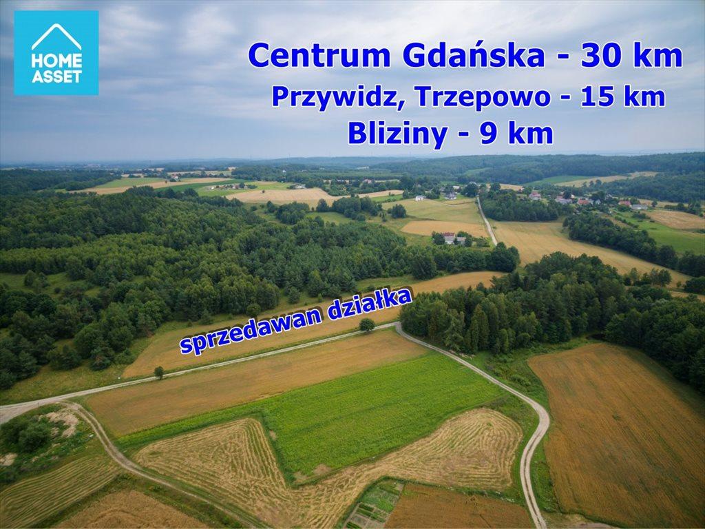 Działka rolna na sprzedaż Błotnia  9300m2 Foto 4