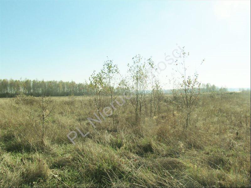 Działka rolna na sprzedaż Tyborów  30000m2 Foto 6