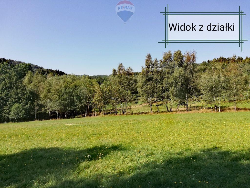 Działka rekreacyjna na sprzedaż Krzeszów  1675m2 Foto 3