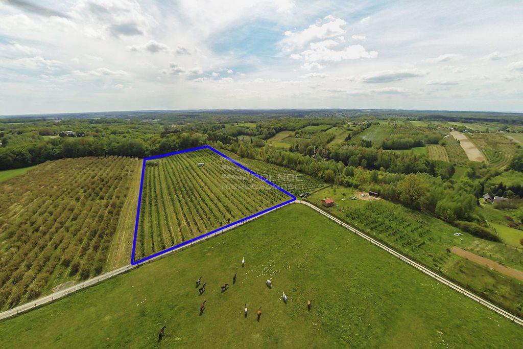 Działka rolna na sprzedaż Kazimierz Dolny, Wylągi  21600m2 Foto 7