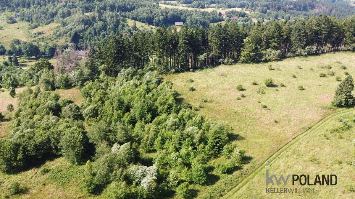 Działka rolna na sprzedaż Kudowa-Zdrój, Pstrążna  7250m2 Foto 2