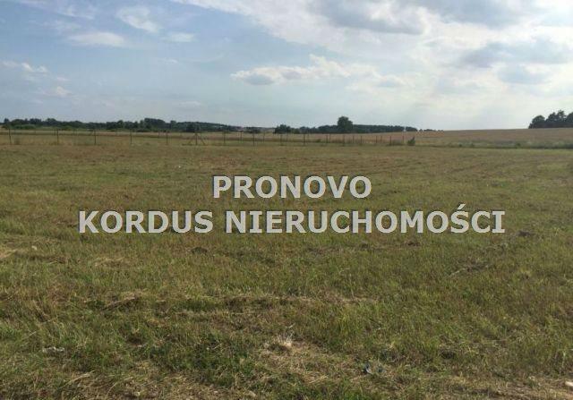 Działka leśna na sprzedaż Wojtkowa, Trzcianiec  1958400m2 Foto 5