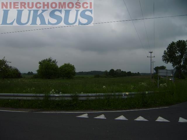 Działka rolna na sprzedaż Prażmów, Prazmów  16000m2 Foto 3