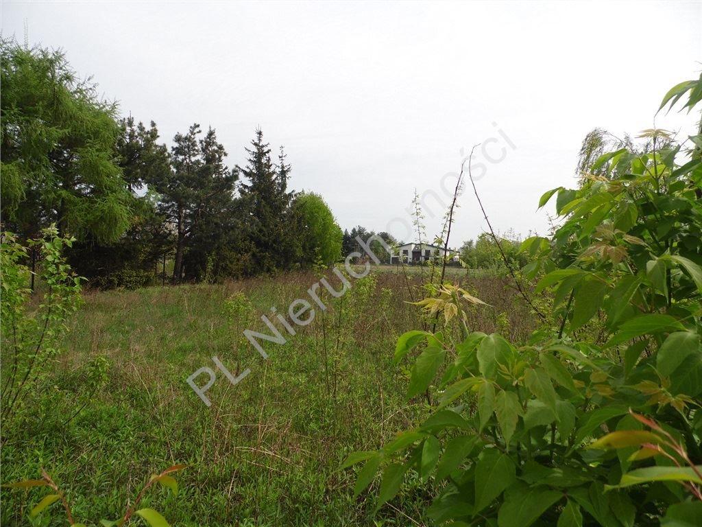 Działka inwestycyjna na sprzedaż Chrzanów Duży  6397m2 Foto 1