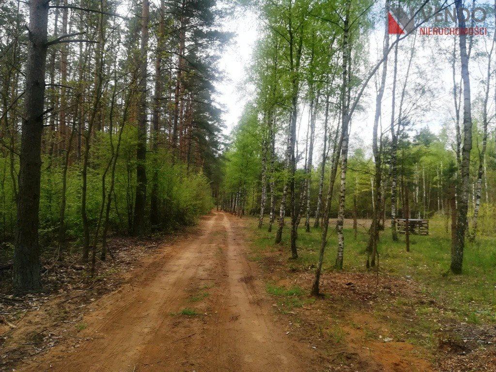 Działka budowlana na sprzedaż Stęszewko, Wypoczynkowa  2462m2 Foto 2