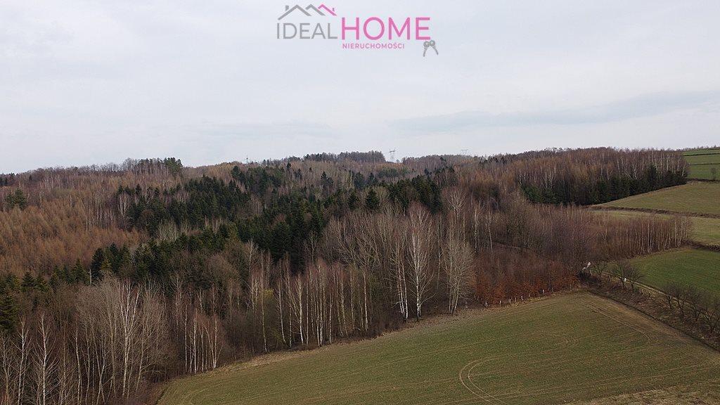 Działka leśna na sprzedaż Glinik Charzewski  5400m2 Foto 8