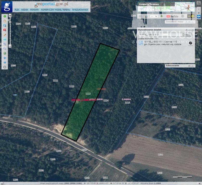 Działka leśna na sprzedaż Czernice  34700m2 Foto 12