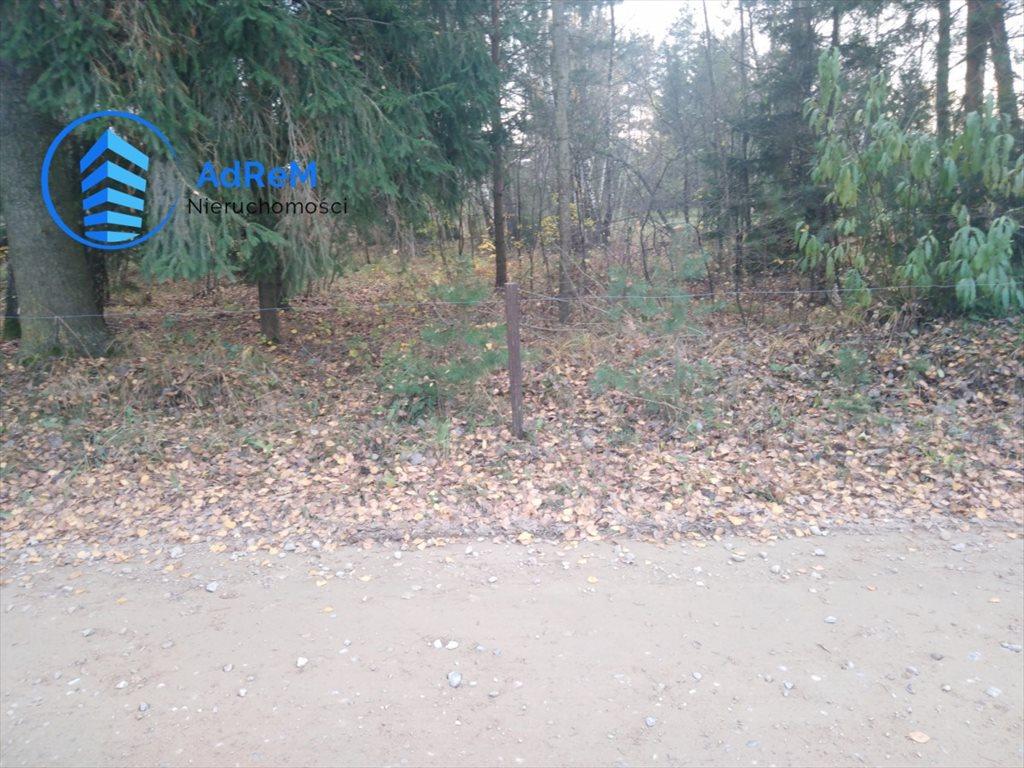 Działka siedliskowa na sprzedaż Kozińce  3000m2 Foto 2