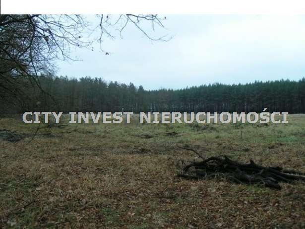 Działka siedliskowa na sprzedaż Zielona Góra, Kiełpin  16700m2 Foto 1