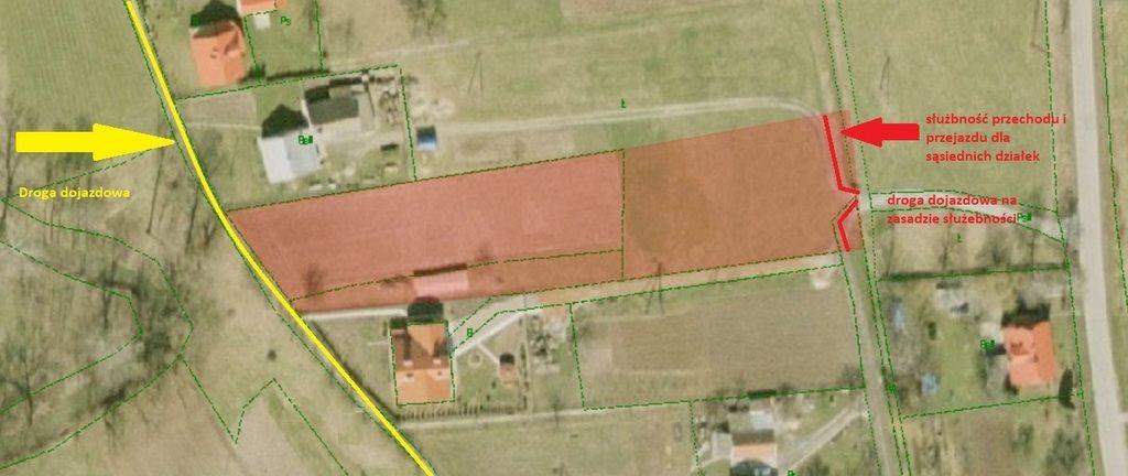 Działka budowlana na sprzedaż Głuchów  2100m2 Foto 4
