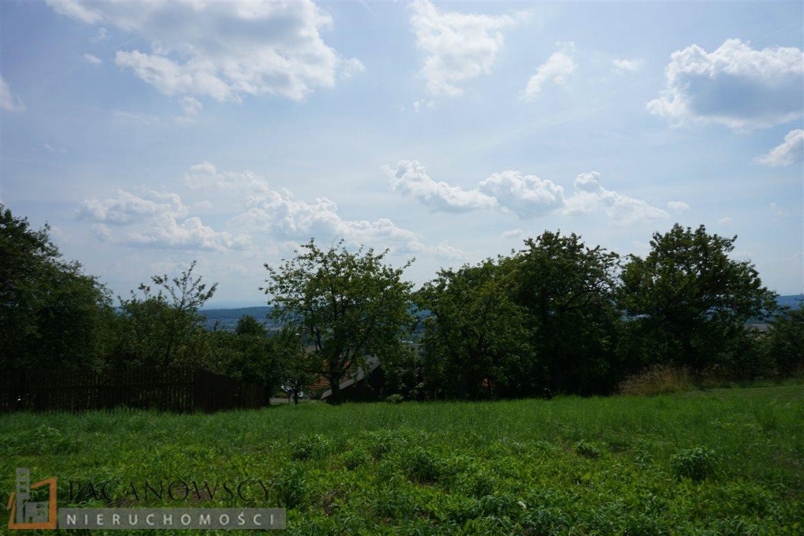 Działka budowlana na sprzedaż Karniowice  10000m2 Foto 6
