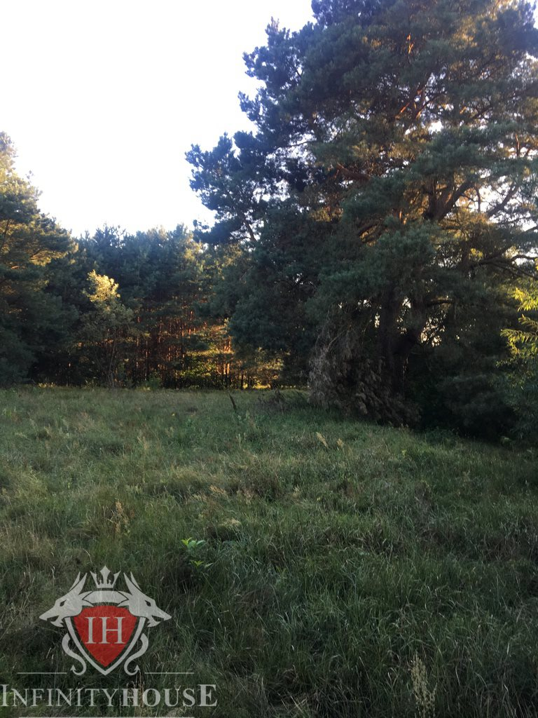 Działka rolna na sprzedaż Skrzeszew  27000m2 Foto 7