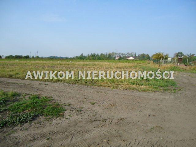 Działka budowlana na sprzedaż Grodzisk Mazowiecki, Chlebnia  100000m2 Foto 4