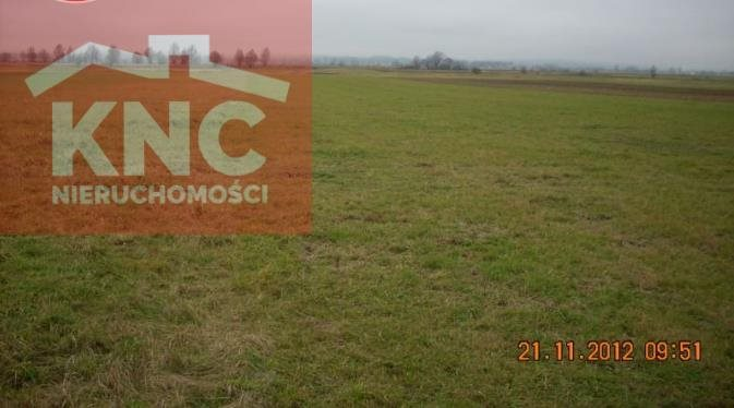 Działka rolna na sprzedaż Potok  16400m2 Foto 1