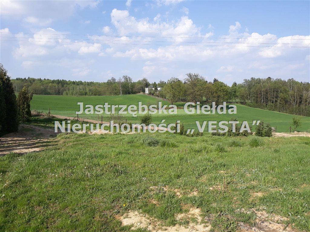 Działka inna na sprzedaż Jastrzębie-Zdrój, Ruptawa  980m2 Foto 1