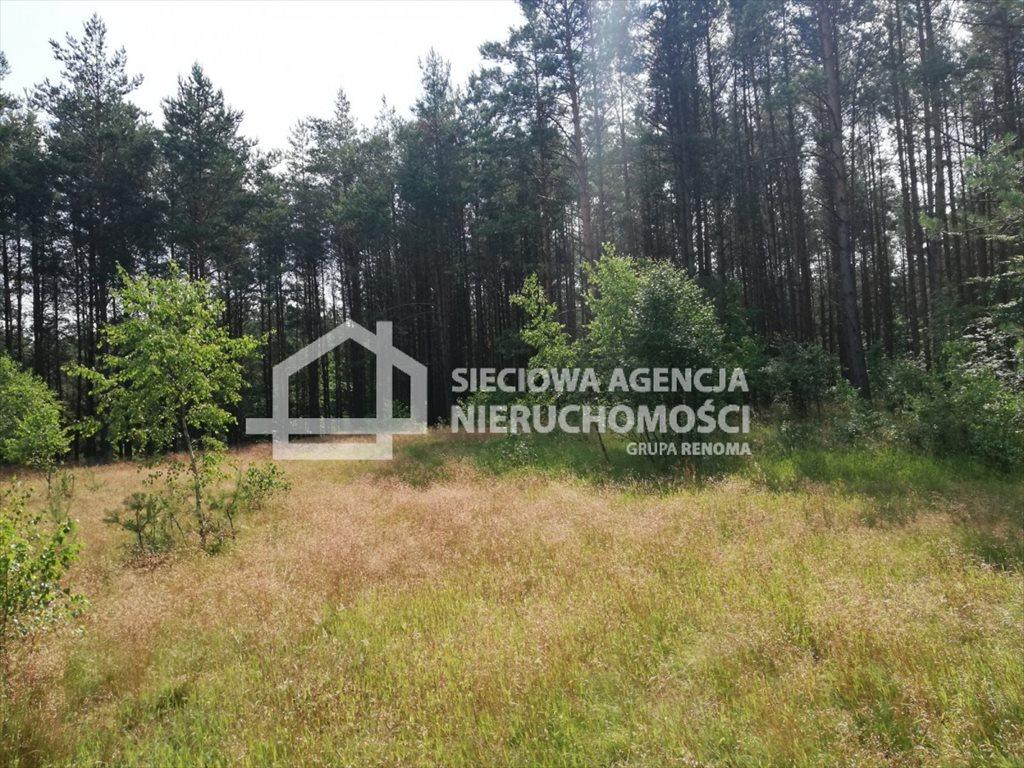 Działka rolna na sprzedaż Załęże  6400m2 Foto 1