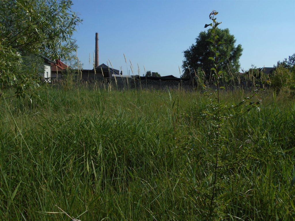 Działka inna na sprzedaż Brzeziny-Kolonia  1874m2 Foto 6
